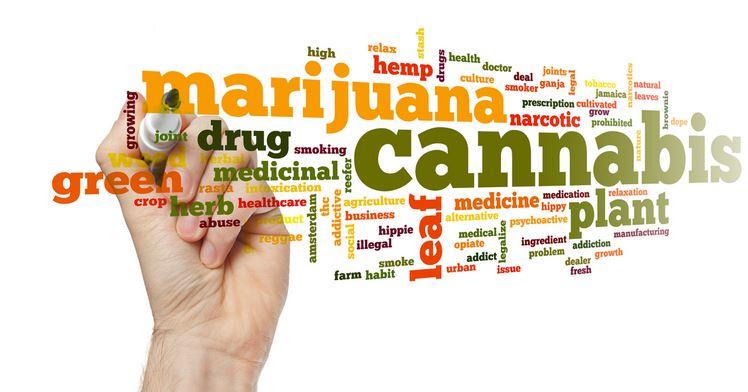 Marijuana Addiction Real